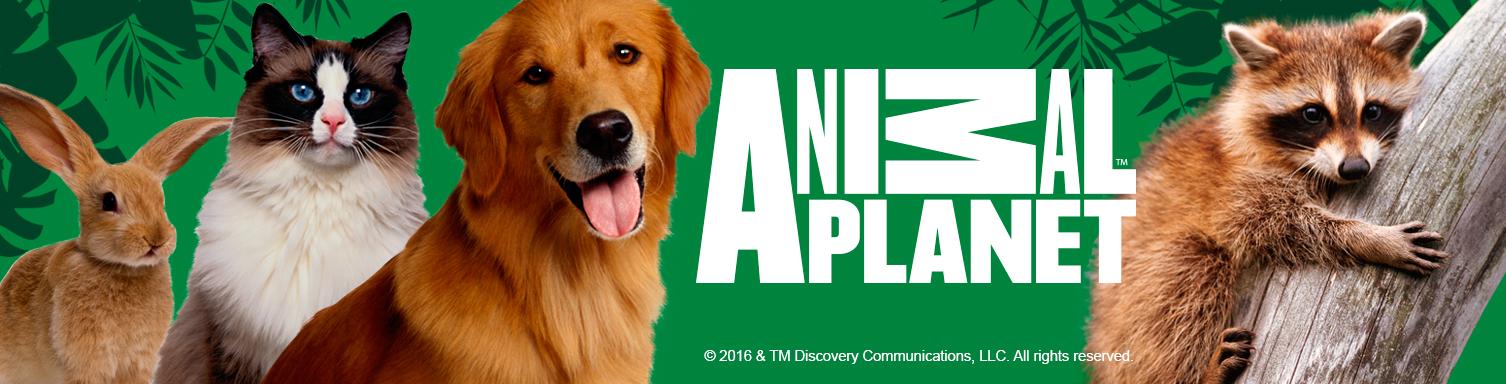 animal planet Animal planet tlc id turbo programación política de privacidad advertencia legal a los usuarios prensa.